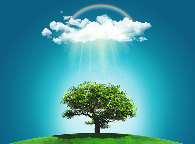 3D render of a grassy landscape with a tree, rainbow and rainclo